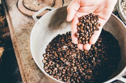 Как выбрать лучшие кофейные зерна?